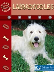 Labradoodles ebook by Lynn Stone,Britannica Digital Learning