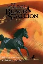 The Young Black Stallion ebook by Walter Farley,Steven Farley