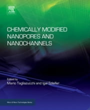 Chemically Modified Nanopores and Nanochannels ebook by Mario Tagliazucchi,Igal Szleifer