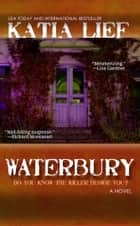 Waterbury: a crime novel ebook by Katia Lief