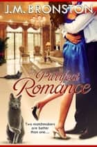 A Purrfect Romance ebook by J. M. Bronston