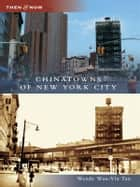 Chinatowns of New York City ebook by Wendy Wan-Yin Tan