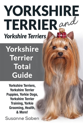 Yorkshire Terrier And
