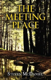 The Meeting Place ebook by Steven McDaniel