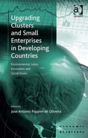 Upgrading Clusters and Small Enterprises in Developing Countries - Environmental, Labor, Innovation and Social Issues ebook by Assoc Prof Jose Antonio Puppim de Oliveira,Professor Peter Nijkamp,Professor Jessie P H Poon,Professor Mike Taylor
