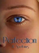 Perfection ebook by Spelbring, JL