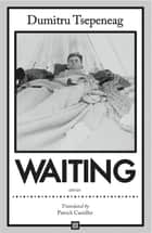 Waiting: stories - Stories ebook by Dumitru Tsepeneag, Patrick Camiller