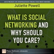 What Is Social Networking and Why Should You Care? ebook by Juliette Powell