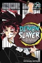 Demon Slayer: Kimetsu no Yaiba, Vol. 20 - The Path Of Opening A Steadfast Heart ebook by Koyoharu Gotouge