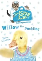 Dr KittyCat is ready to rescue: Willow the Duckling ebook by Jane Clarke
