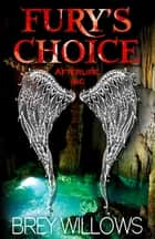 Fury's Choice ebook by Brey Willows