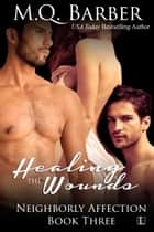 Healing the Wounds ebook by M.Q. Barber