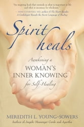 Spirit Heals ebook by Meredith Young-Sowers