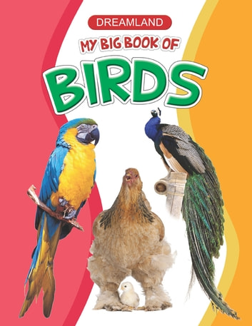 My Big Book of Birds - Big Book Series ebook by Anuj Chawla