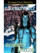 Incorrect Spelling ebook by C.S. Chatterly