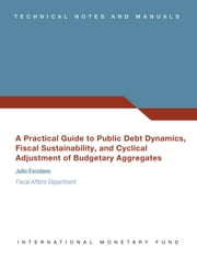 A Practical Guide to Public Debt Dynamics, Fiscal Sustainability, and Cyclical Adjustment of Budgetary Aggregates ebook by Julio Mr. Escolano