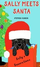 Sally Meets Santa ebook by Stephen Huneck