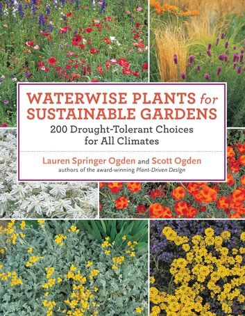 Waterwise Plants for Sustainable Gardens - 200 Drought-Tolerant Choices for all Climates ebook by Scott Ogden,Lauren Springer Ogden