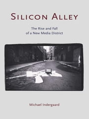 Silicon Alley - The Rise and Fall of a New Media District ebook by Michael Indergaard