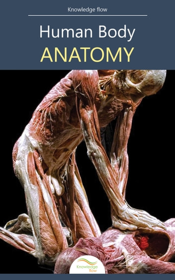Anatomy Of The Human Body Ebook