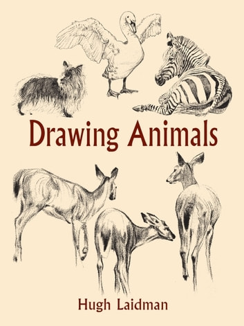 Drawing Animals ebook by Hugh Laidman
