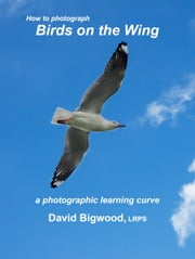 How to Photograph Birds on the Wing ebook by David Bigwood