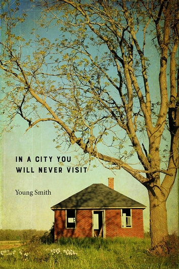 In a City You Will Never Visit ebook by Young Smith