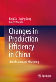 Changes in Production Efficiency in China - Identification and Measuring ebook by Bing Xu,Juying Zeng,Junzo Watada
