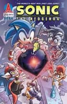 Sonic the Hedgehog #214 ebook by Ian Flynn, Steven Butler, Terry Austin,...