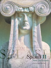 Splash 11 - New Directions ebook by Rachel Rubin Wolf