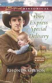 Pony Express Special Delivery ebook by Rhonda Gibson