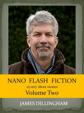 Nano Flash Fiction Volume Two ebook by James Dillingham
