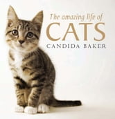 The Amazing Life of Cats ebook by Candida Baker