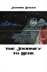 Journey to Here ebook by Jo Baker