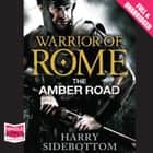 The Amber Road audiobook by Harry Sidebottom