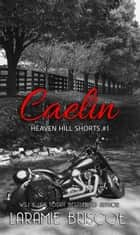 Caelin ebook by Laramie Briscoe