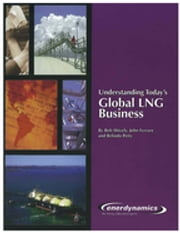 Understanding Today's LNG Business ebook by Bob Shively,Belinda Petty