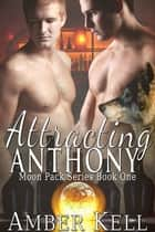Attracting Anthony ebook by Amber Kell