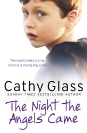 The Night the Angels Came ebook by Cathy Glass