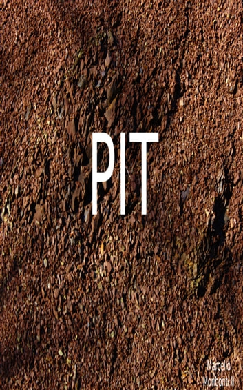 PIT ebook by Marcello Moribonti II