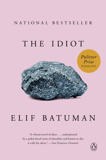 The Idiot - A Novel ebook by Elif Batuman