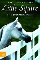 Little Squire - The Jumping Pony ebook by Judy Andrekson