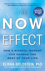 The Now Effect - How a Mindful Moment Can Change the Rest of Your Life ebook by Elisha Goldstein, Ph.D.