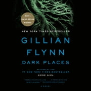 Dark Places - A Novel audiobook by Gillian Flynn