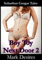 Boy Toy Next Door 2 ebook by Mark Desires
