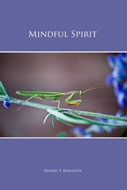 Mindful Spirit ebook by Dennis T. Maglinte