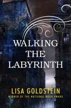 Walking the Labyrinth ebook by Lisa Goldstein