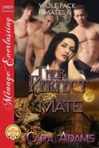 Their Perfect Mate ebook by
