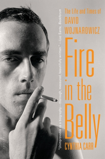 Fire in the Belly - The Life and Times of David Wojnarowicz ebook by Cynthia Carr