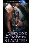 Beyond Shadows